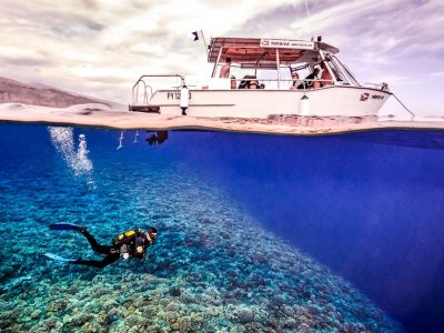 Split shot of a TopDive dive boat at the surface and below a diver with a coral reef with hard corals, Tahiti, Papeete, Topdive, French Polynesia, South Sea, Pacific Ocean.