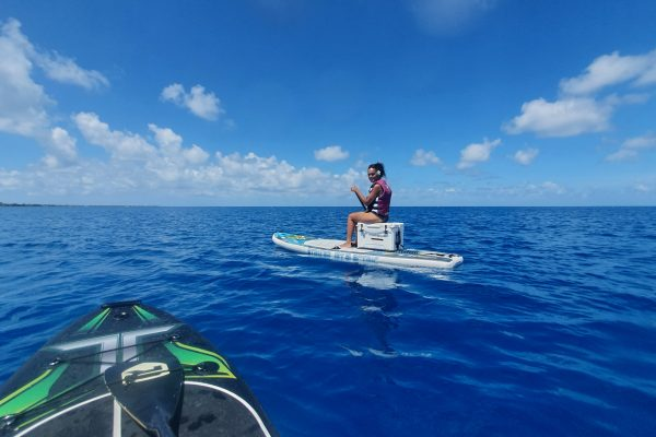 E-paddle 1