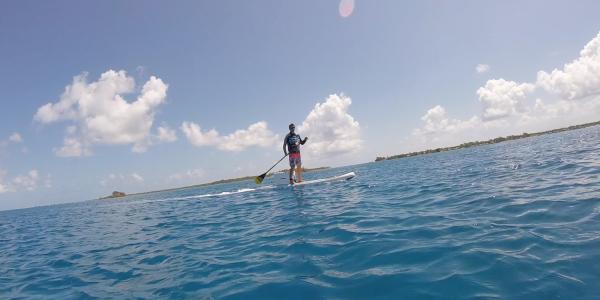 E-paddle 2